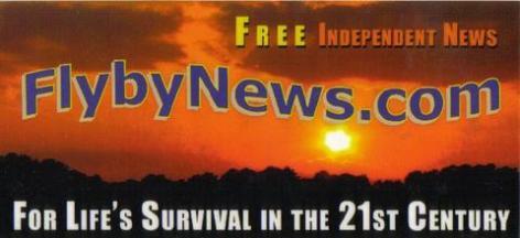 FN sunset logo design