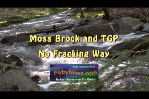 No Fracking Way and FN(1)