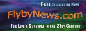 Flyby News blue logo design